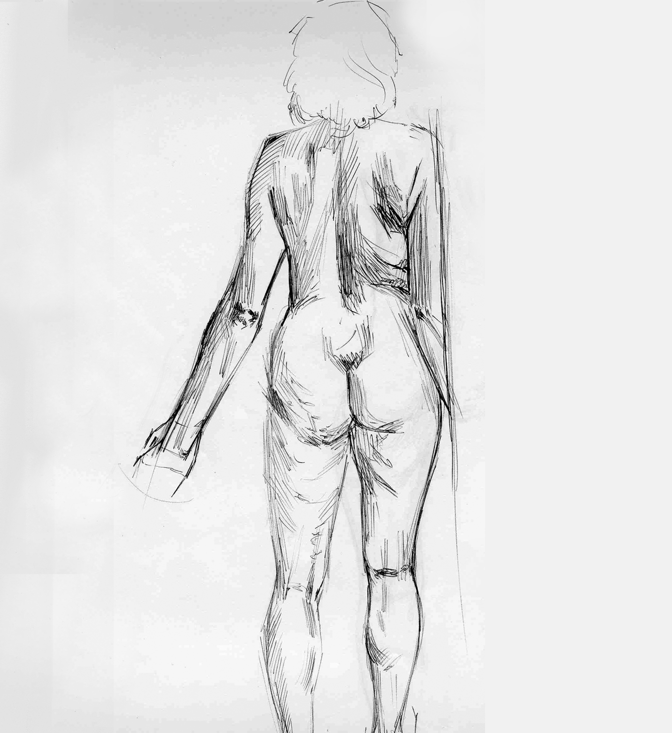 torso_from_behind